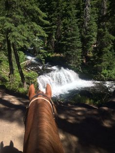 Now that's a view! What better than from the back of a horse.