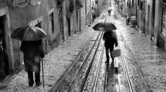 It's raining by Rui Palha
