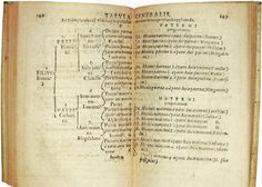 Genealogical numbering systems - Wikipedia