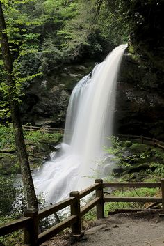 Dry Falls, though near Highlands, NC was one of our favorite day trips from Atlanta. A waterfall you can walk behind.