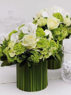 Bloem en Blad | Vakblad voor de bloemendetailhandel