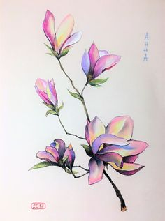 Flower Drawing Discover Painting by Hanna Taranishyna (Ukraine) Magnolia Paint, Magnolia Flower, Magnolia Branch, Watercolor Flowers, Watercolor Art, Magnolia Tattoo, Cherry Blossom Art, Watercolor Paintings For Beginners, Blossom Tattoo
