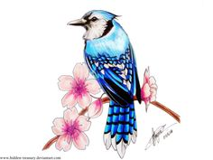 Bluejay Cherry Blossom Tattoo