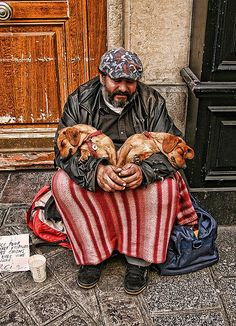 Homeless puppies, Paris, October 2008 by Torcello Trio, via Flickr -