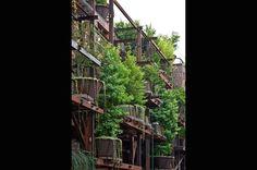 都会にツリーハウス集合住宅が出現 ! ──騒音や大気汚染から住民を守る ( photo 12 )   GQ JAPAN