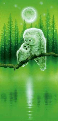 Owls - I think this may be Kentaro Nishino?