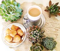 Petals and Joe. Succulents and sugar. Daily coffee break. coffee, flowers