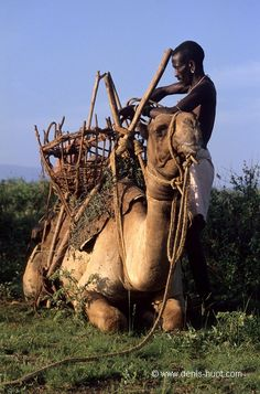 Africa | A Rendille man with his camel.  Northern Kenya | ©Christine and Michel Denis Huot