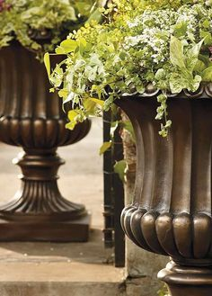 The quintessential, classic planter!