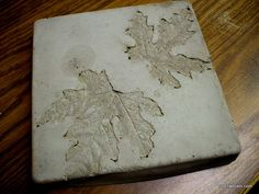 Step 1 - cast  Maple leaves into cement