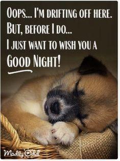 Good Night Funny, Good Night Love Quotes, Good Night Images Hd, Good Night Prayer, Good Night Blessings, Good Night Messages, Good Night Moon, Good Morning Good Night, Good Morning Quotes