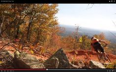 Video: Bell Built Contestant: Timber Trail, Coldwater Mountain, Anniston, AL | Singletracks Mountain Bike News
