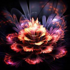 DesignArt 'Fractal Flower' Graphic Art on Wrapped Canvas in Orange/Purple Size: Fall Canvas Art, Abstract Canvas Art, Canvas Art Prints, Canvas Wall Art, Orange Wall Clocks, Orange Wall Art, Orange Walls, Flower Graphic, Graphic Art