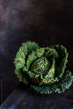 Dinners in 40 Minutes or Less Beautiful Savoy Cabbage by Nadine Greeff - Stocksy United - Royalty-Free .Beautiful Savoy Cabbage by Nadine Greeff - Stocksy United - Royalty-Free . Food Styling, Photo Fruit, Fotografie Workshop, Vegetables Photography, Dark Food Photography, Savoy Cabbage, Fruit And Veg, Food Design, Organic Recipes