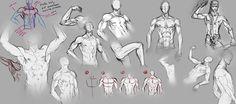 http://fc08.deviantart.net/fs71/i/2012/120/b/d/male_body_by_moni158-d4y1o08.jpg