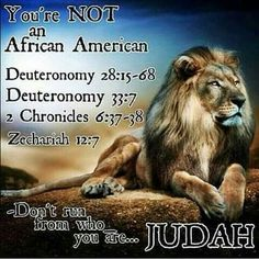 Black Yisrael ~ 12 Negro Tribes♥ The other ten tribes know who they are do you? Black Hebrew Israelites, 12 Tribes Of Israel, Tribe Of Judah, Black History Facts, Bible Knowledge, Bible Truth, Bible Scriptures, Spirituality, Sabbath