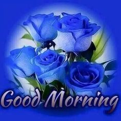 New good morning images for love ~ Good morning inages Good Morning Sister, Special Good Morning, Good Morning Roses, Good Morning Funny, Good Morning Beautiful Images, Good Morning Images Hd, Good Morning Picture, Morning Pictures, Good Night Wishes