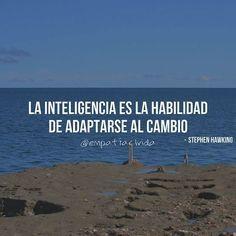 """""""La inteligencia es la habilidad de adaptarse al cambio"""" - Stephen Hawking   P H O T O: @leoartesi"""