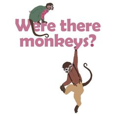 Mal:  Were there monkeys? Some terrifying space monkeys maybe got loose?