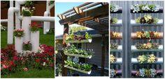 Plante si tuburi PVC - idei pentru proiecte care fura priviri Aceasta combinatie creativa de plante si tuburi PVC va vor face sa va doriti si voi o astfel de amenajare in gradina. http://ideipentrucasa.ro/plante-si-tuburi-pvc-idei-pentru-proiecte-care-fura-priviri/