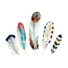 Watercolor Art Print.    Title: 5 Feathers No. 9    12 x 12 print of my original watercolor and ink feather painting. ♦♢♦ This image can also be