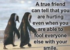 I have great very in tune friends and I am so grateful they know me well enough they see the pain.