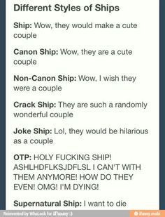 Most people can't describe fandoms, fangirling/fanboying, OTP, Cannons, Feels and other fandom terms.This is going to make everything understandable.  Fandom: a group of dedicated indiv…