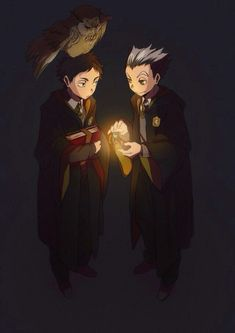 Haikyuu!! /crossover //Harry Potter ///Bokuto x Akaashi