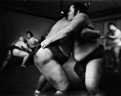 © Tomasz Gudzowaty, Sumo series