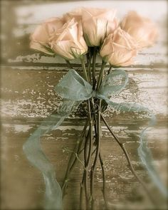 shabby chic rose paintings | Garden Photography, Rose Photography, Still Life, Shabby Chic Art ...