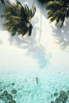 68 Best Ideas for travel aesthetic tropical Beach Aesthetic, Travel Aesthetic, Places To Travel, Places To Go, Travel Destinations, Travel Pics, Holiday Destinations, Travel Quotes, Travel Pictures