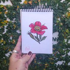 Diseño disponible para tatuar! Consultas por privado 😉🌿💖 #rosamosqueta #botanicaltattoo #flowers #flores #belpainefilu #bttbuenosaires #inkedmag #inked #tattooart #tattoodesign #art #tattoolife #equilattera #plants #TAOT #smalltattoo #floraltattoo #silverbackink #pretty #greenpoint #igersbuenosaires #ig_Argentina #drawing #sketch #flowertattoo