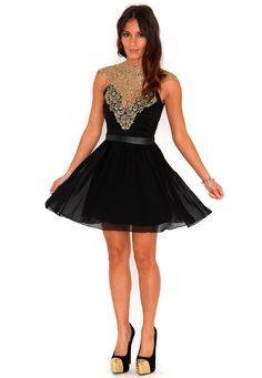 Regan Lace Panel Skater Dress