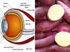 Believe it or not, there is a plant that can efficiently restore vision, remove liver fat and cleanse the colon completely, and all this with [...]