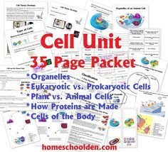 Cell Unit: Cell Organelles and their Function, Animal vs. Plant Cells, Eurkaryotic vs. Prokaryotic Cells, and more - Homeschool Den