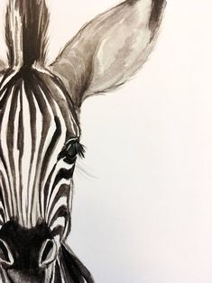 : wasserfarbenkunst watercolor plakat zebra print babyBaby Zebra Watercolor PRINT Baby Zebra Watercolor PRINT Elephant Charcoal Drawing GICLEE PRINT Elephant Decor Elephant Nursery Black and White Art Gift for Her Gift for Mom Artist: Racha Arte Zebra, Zebra Kunst, Zebra Art, Zebra Decor, Zebra Drawing, Zebra Painting, Baby Drawing, Drawing Drawing, Painting Prints