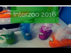 Interzoo-Report: Was bietet die weltgrößte Messe der Heimtierbranche für Katzen und Katzenhalter?  #Interzoo 1 Day, Tags, Youtube, Hang In There, Cats, Youtubers, Mailing Labels, Youtube Movies