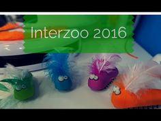 Interzoo-Report: Was bietet die weltgrößte Messe der Heimtierbranche für Katzen und Katzenhalter?  #Interzoo 1 Day, Tags, Youtube, Hang In There, Cats, Youtubers, Mailing Labels, Youtube Movies