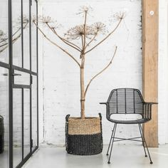 Rattan Tub Chair Black at Accessories for the Home
