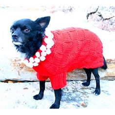 Isabella Cane Dog Sweater - Holiday Red with White Poms at HSN.com