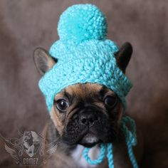 ea12f2e8d17 French Bulldog Clothe Puppy Beanie pom pom hat dog clothes by  FancyBullCreations on Etsy
