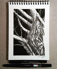 Lidia Barragán. #inktober #inktober2016 #sketch #tree #nature #texture #sketchbook #treedrawing #fineline #ink #inkart #treestagram #trees #dibujo #árboles #árbol #cuaderno #tinta #naturaleza #textura