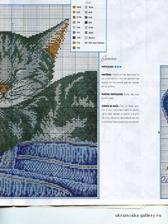 Gallery.ru / Фото #36 - кошачьи - tat20065