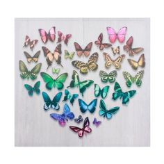 The Butterfly Heart canvas has a beautiful heart shape made out of multi-coloured butterflies against a grey background. Heart Canvas, Heart Wall Art, Harry Corry, Living Room Mirrors, Gray Background, Making Out, Canvas Wall Art, Heart Shapes, Butterflies