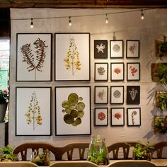 Furniture, Botanical artworks for home decorations dining room wall decor design idea stringe bulb hanging