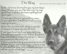 The Effective Pictures We Offer You About Blind dog hacks A quality picture can tell you many things. You can find the most beautiful pictures that can be presented to you about Blind dog tips in this Dog Poems, Dog Quotes, Animal Quotes, Pet Loss Quotes, Poems About Dogs, Dog Sayings, A Dogs Purpose Quotes, Animal Signs, I Love Dogs