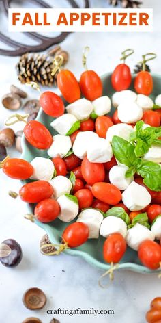 The perfect easy Thanksgiving Finger food Thanksgiving Appetizer idea. Caprese Skewers are an easy Fall and Thanksgiving appetizer for your Thanksgiving dinner or for any fall party. Simple for an easy Thanksgiving make ahead appetizer that even the kids will love to help get ready for the big fall party. Skewer Appetizers, Fall Appetizers, Make Ahead Appetizers, Appetizer Ideas, Finger Food Appetizers, Best Thanksgiving Side Dishes, Thanksgiving Dinner Recipes, Dinner Party Recipes, Caprese Skewers