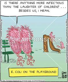 E coli on the playground