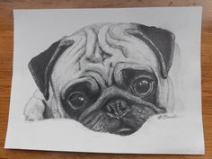 dog learning,dog tips,dog care,teach your dog,dog training Pencil Art Drawings, Art Drawings Sketches, Easy Drawings, Dog Pencil Drawing, Animal Sketches, Animal Drawings, Cute Pug Puppies, Arte Sketchbook, Pug Art