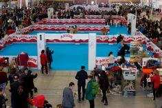 Expo Canina Talavera 3. #Talavera #Exposicion #Canina